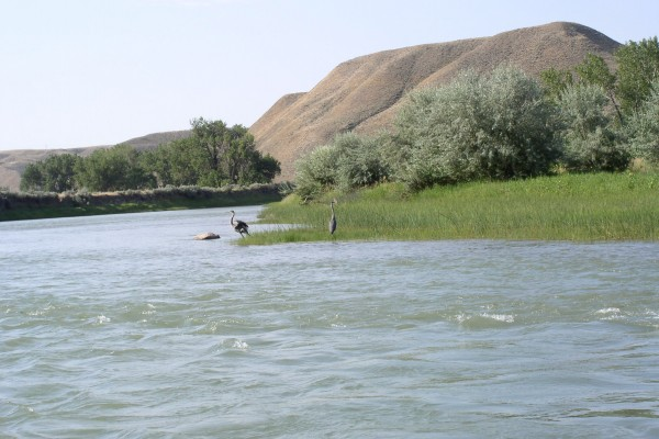 Marias River Watershed Conservation District